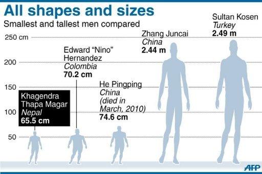 comparación entre personas altas y bajas